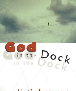God in the Dock: Essays on Theology and Ethics